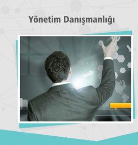 Yönetim Danışmanlığı - Dijital Kampüs Eğitimleri