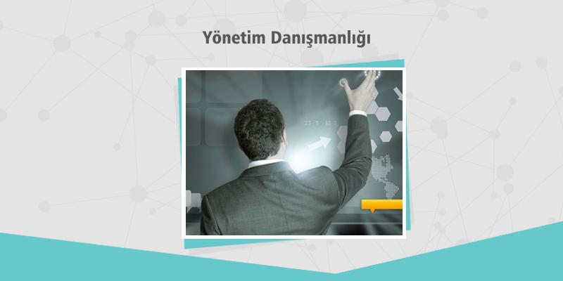 Yönetim Danışmanlığı – Dijital Kampüs